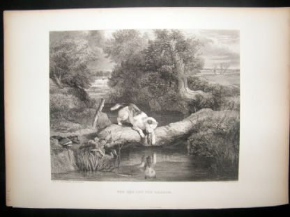 After Landseer 1860 Antique Dog Print. The Dog and the Shadow | Albion Prints